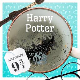 Afleveringplaatje van Aflevering 9¾: Harry Potter