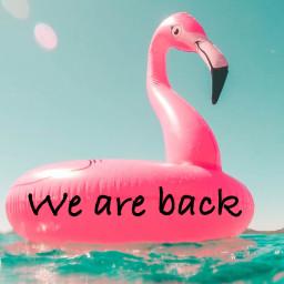 Afleveringplaatje van Fortnite en Apple maken ruzie, ING en Ahold zijn dikke vrienden! Welkom terug van vakantie!