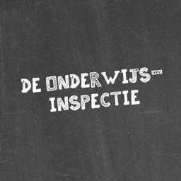 Afleveringplaatje van #50 | Lieven Viaene en Karen Van de Cruys over de onderwijsinspectie