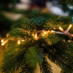 Afleveringplaatje van Aflevering 39, het jaaroverzicht op de kerstmarkt