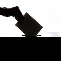 Afleveringplaatje van Aflevering 33, met Piet Delrue over de verkiezingen en ondernemen #vanRSL