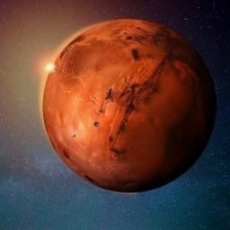 Afleveringplaatje van NieuwNieuws van de dag | 08-01-2021 - Mars is de schuld van alles