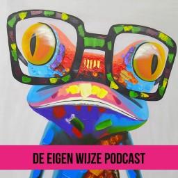 Afleveringplaatje van #17 De Eigen Wijze Podcast: Stendert Rademakers over je waarde, duurzaamheid + het nieuwste normaal.